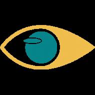 Single Focus Web, Website Designers